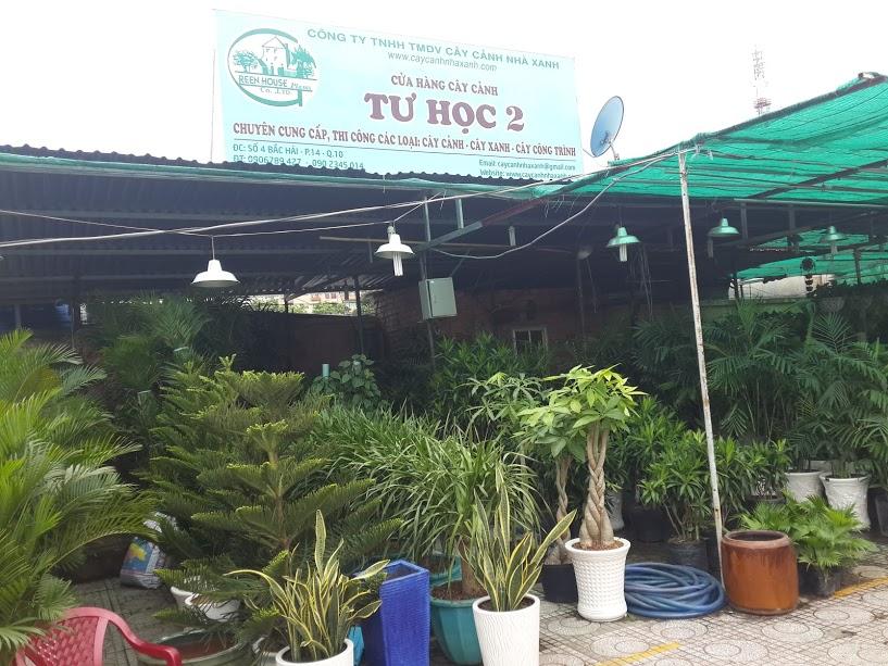 Cửa hàng Cây cảnh Nhà xanh
